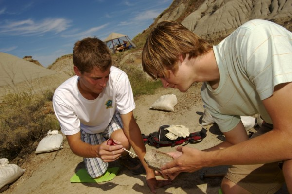 州立恐竜公園、化石発掘